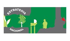 rbkk-aliados-redd-mas-mexico-logo